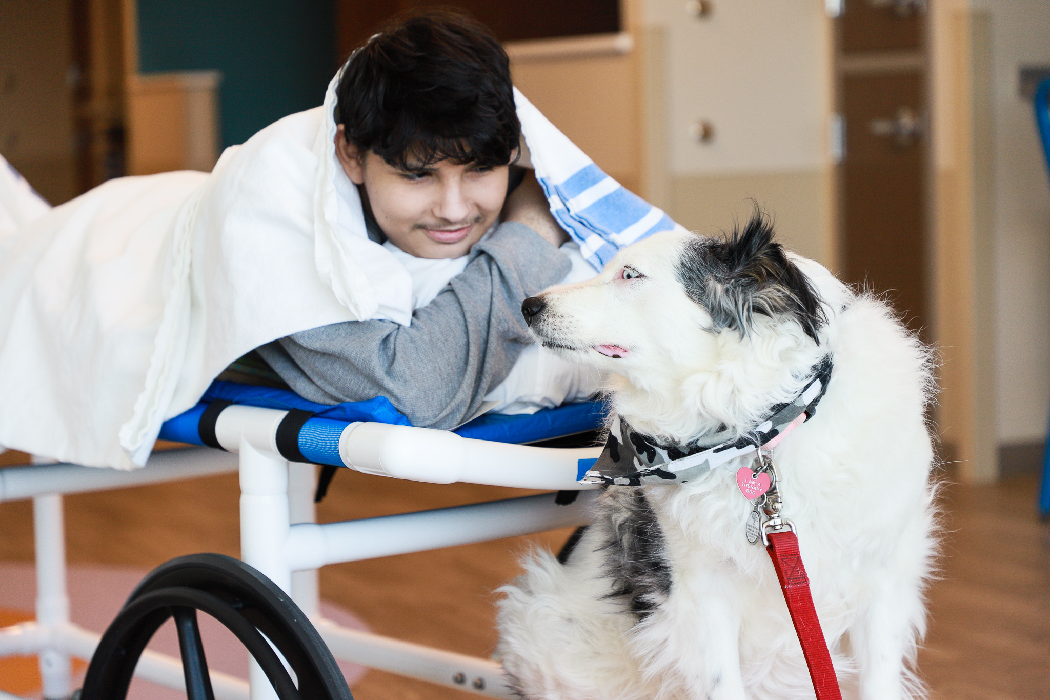 Meet our Pawsome Pet Therapy Teams